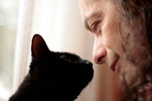 Cat exploring Human nose